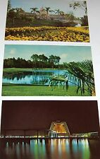 South Florida Postcards - -70's--three cards from **Walt Disney World** #2