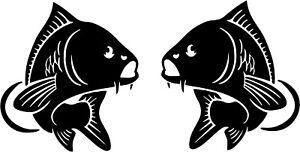 Carp fish decals stickers Van, Car, fishing box  x2