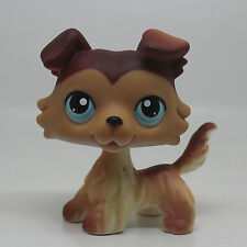 LPS #58 Littlest Pet Shop Brown White Collie Puppy Dog Blue Eyes Toys Hasbro