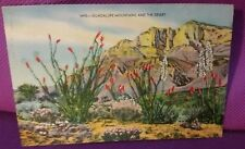 Vintage Texas Postcards Guadalupe Mountains and the Desert