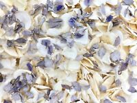 Grey Delphinium Ivory Dried Biodegradable Wedding Confetti. Real Throwing Petals