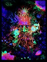 Psychedelic wall tapestry, Blacklight Art Nature UV Fluorescent Glow Psytrip