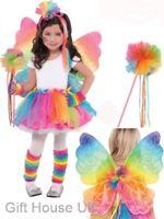 Rainbow Ribbon Fairy Butterfly Tutu Wings Wand Leg Warmers Fancy Dress Accessory