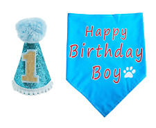 BIPY Dog 1st Birthday Hat and Bandana Set for Boys Small Medium Large Dogs Cats