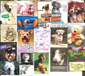 Lot of 20 DOG LOVERS CARDS 12 Birthday 2 TOY 1 GW+ FUNNY & BRIGHT AVANTI RPG +