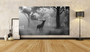 Black And White Stag Deer Forest Wild Animal Art Large Canvas Picture 20x30 INCH