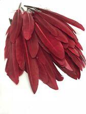 BULK 50pcs 10-15cm Burgundy Red Goose Feathers DIY Craft Millinery Dream Catcher