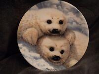 Royal Grafton Fine Bone China England BABY SEALS' Collector's Plate Mike Jackson
