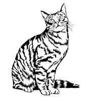 STENCILS CRAFTS TEMPLATES SCRAPBOOKING CAT STENCIL 2b - A4 MYLAR