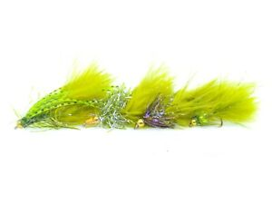 12 Gold head Damsel Nymphs Fly Fishing Still Water Rainbow Trout Flies Selection
