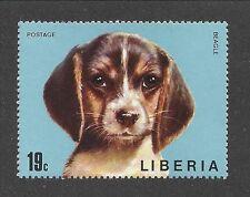 Dog Art Cute Head Study Portrait Postage Stamp BEAGLE HOUND Puppy Liberia MNH