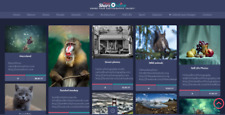 Profitable PHOTO Sharing & Showcase Membership Business Website For Sale
