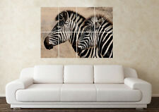 Large Zebra Zoo Wildlife Stripes Pet Animal Safari Wall Poster Art Picture Print