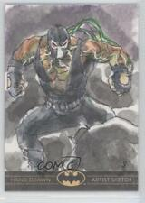 2012 2012-13 Cryptozoic DC Batman: The Legend Sketch Cards #N/A Card 0c3