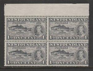 NEWFOUNDLAND 1937 GEORGE VI CORONATION 1c PERF 13 COMB SG 257eb FISH HOOK FLAW