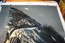 BLACK FEATHER ANGEL COSTUME WINGS