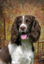 "English Springer Spaniel Dog A6 (4"" x 6"") Blank Card / Notelet No14 by Starprint"