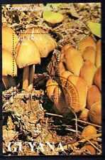Champignons Guyane (14) bloc oblitéré