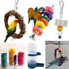 Newl Cage Swing Bird Toy Parrot Rope Harness Cage Toys Parakeet Cockatiel Budgie