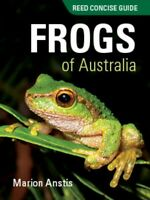 Concise Guide Frogs of Australia by Marion Anstis (Paperback, 2017)
