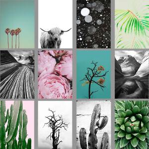 PHOTO ART PRINTS: Palm Trees, Peonies, Cactus, Cow, Scandi Style Home Decor