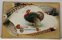 Thanksgiving Greetings Turkey Thru Feather View Embossed 1916 Postcard F12