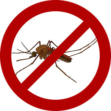 Pack de 3 huiles essentielles anti-moustiques - Les indispensables de l'été!