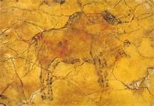 Spain Cuevas de Altamira Bison Bisonte Wisent
