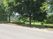772 m2 Voll erschlossenes Baugrundstück in 54413 Beuren Hochwald Grundstück
