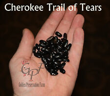 Cherokee Trail of Tears Pole Beans - Rare Heirloom Pole Bean Seeds