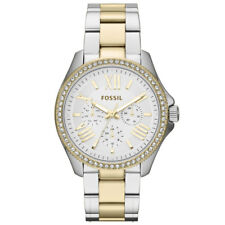 98172a108fee FOSSIL AM4543 Cecile Silver Dial Two-tone Steel Ladies Watch