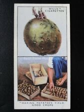 No.31 MAKING POTATOES YIELD GOOD CROPS Garden Hints - Wills 1938