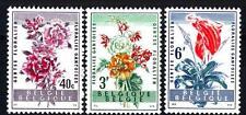 BELGIUM - BELGIO - 1960 - Festa dei fiori a Gand