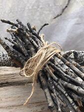 Aspen Branches from Aspen, Colorado