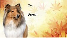 Rough Collie Dog (Sable) Self Adhesive Gift Labels by Starprint