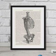 Dictionary Page Art Print Vintage Human Skeleton On Book Large FRAMED