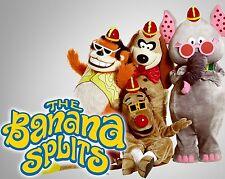 "The Banana Splits 10"" x 8"" Photograph no 1"