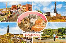 Bamforth & Co Ltd Blackpool Posted Collectable English Postcards