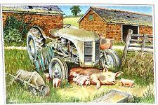 Gris fergie et porcs tracteur blanc carte de vœux d'un original aquarelle