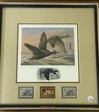 1996-97 Federal Duck Stamp Print Executive Edition - Wilhelm Goebel -  RW63