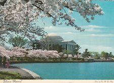 Jefferson Memorial, Washington, D.C. Postcard