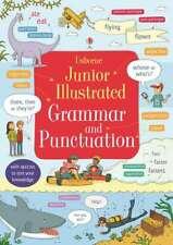 Kids Usborne Junior Illustrated Grammar & Punctuation Dictionary Paperback New!!