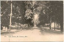 View on Cass Avenue in Mt. Clemens MI Postcard 1905