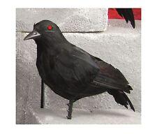 *HALLOWEEN BLACK BIRD FEATHER STUFFED CROW RAVEN JACKDAW PARTY PROP DECORATION*