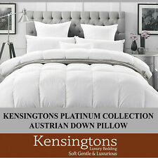 Kensigntons®100%Austrian Goose Down Pillow  Platinum Collection 500 Thread Count
