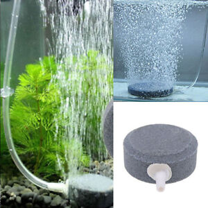 4cm Air Bubble Stone Aerator for Aquarium Fish Tank Pump Hydroponic Oxygen Plate