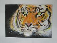 Hand drawn animal pictures, Original Contemporary TIGER