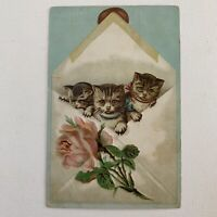 Antique Embossed Greeting Card Ephemera Cats In Envelope Cute Kitten Rose
