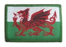 WELSH DRAGON PATCH Military Forces velcro backed UBAC colour Wales flag patch