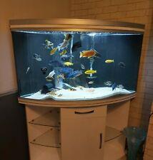 350l aquarium Juwel trigon Corner Tank